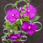 mariage_fleursdemotion_2016_19