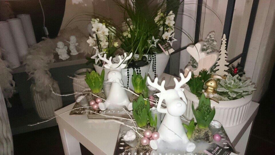 Rennes - Fleurs d'émotion - Noël 2018